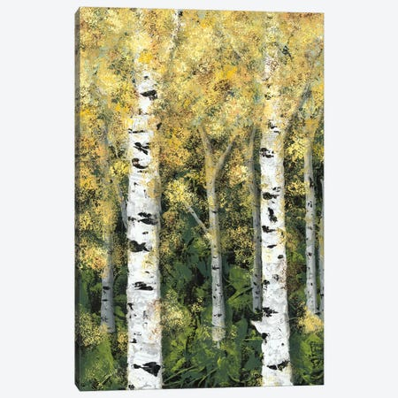 Birch Treeline I Canvas Print #JAD53} by Jade Reynolds Canvas Wall Art