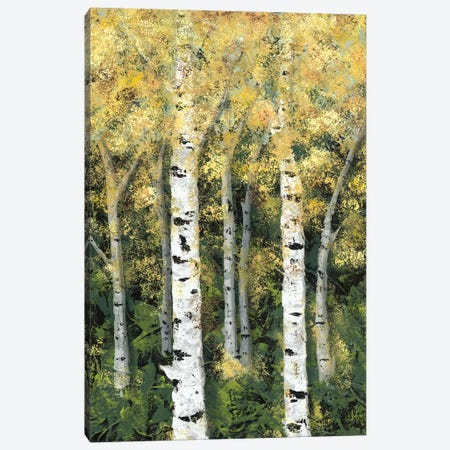 Birch Treeline II Canvas Print #JAD54} by Jade Reynolds Art Print