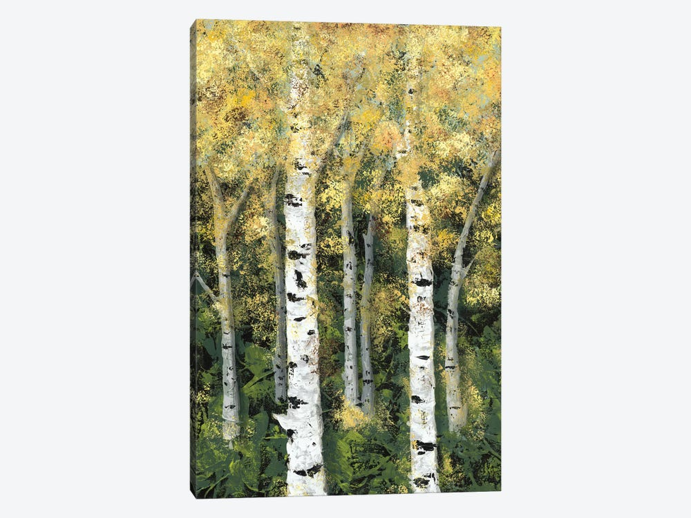 Birch Treeline II by Jade Reynolds 1-piece Canvas Print