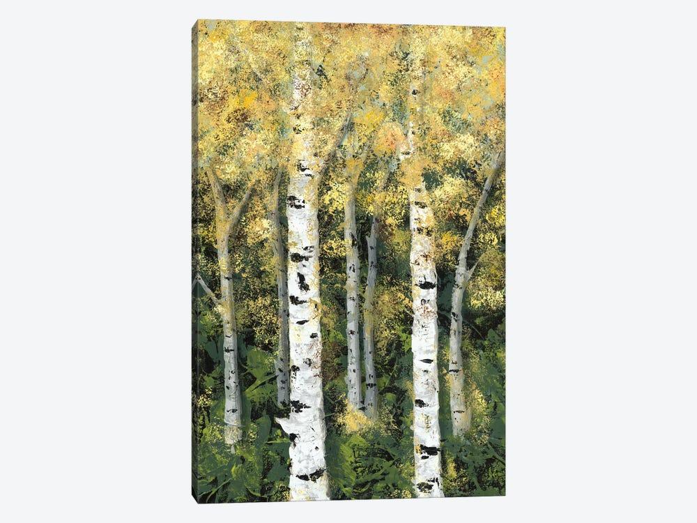 Birch Treeline II by Jade Reynolds 1-piece Canvas Print