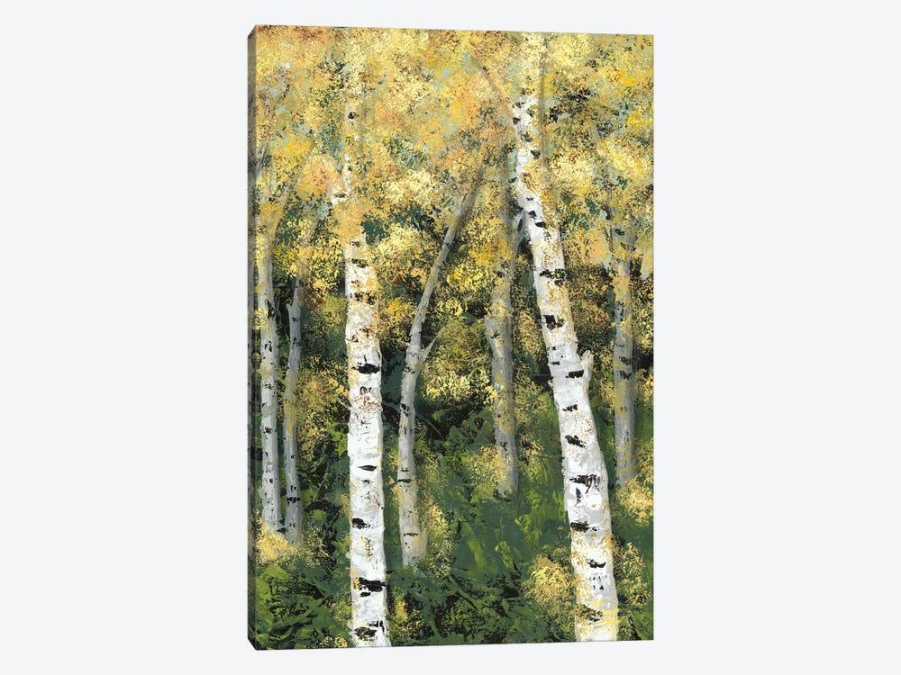 Birch Treeline III by Jade Reynolds 1-piece Canvas Artwork