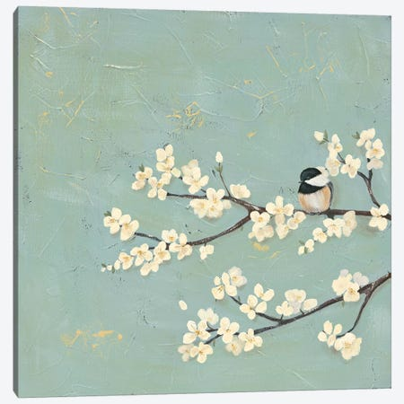 Chickadee & Dogwood I Canvas Print #JAD56} by Jade Reynolds Canvas Art Print