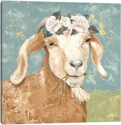 Farm Fun I Canvas Art Print