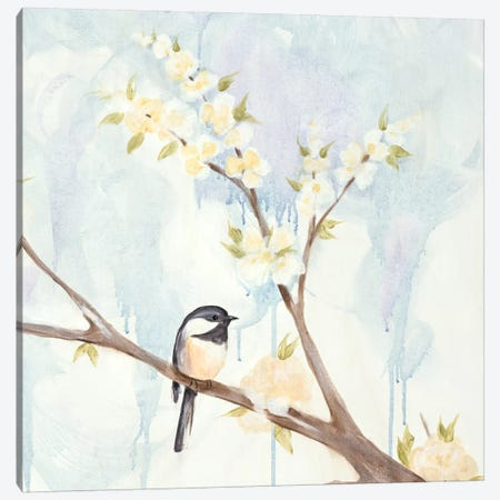 Spring Chickadees II Canvas Print #JAD5} by Jade Reynolds Canvas Print