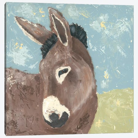 Farm Life-Donkey Canvas Print #JAD67} by Jade Reynolds Canvas Artwork