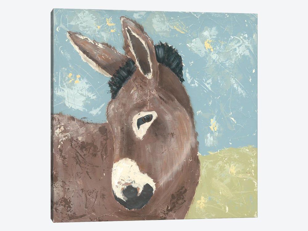 Farm Life-Donkey by Jade Reynolds 1-piece Canvas Print