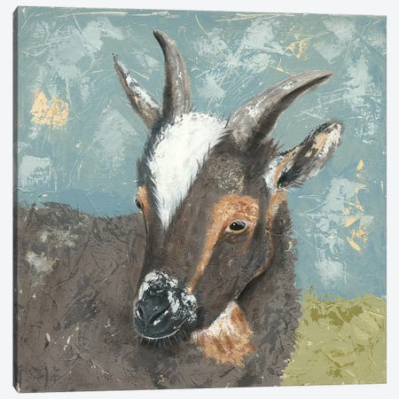 Farm Life-Grey Goat Canvas Print #JAD68} by Jade Reynolds Canvas Art Print