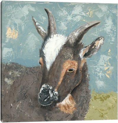 Farm Life-Grey Goat Canvas Art Print