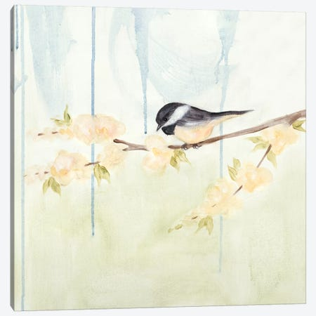 Spring Chickadees III Canvas Print #JAD6} by Jade Reynolds Canvas Art Print