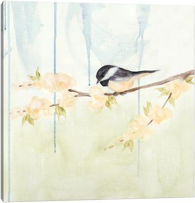 Spring Chickadees III Canvas Print #JAD6