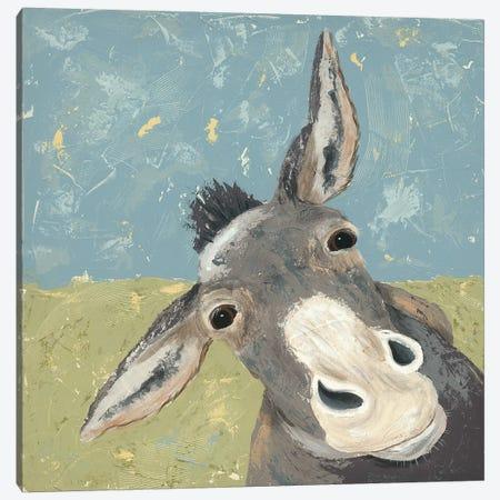 Farm Life-Mule Canvas Print #JAD70} by Jade Reynolds Canvas Wall Art