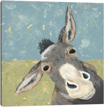 Farm Life-Mule Canvas Art Print
