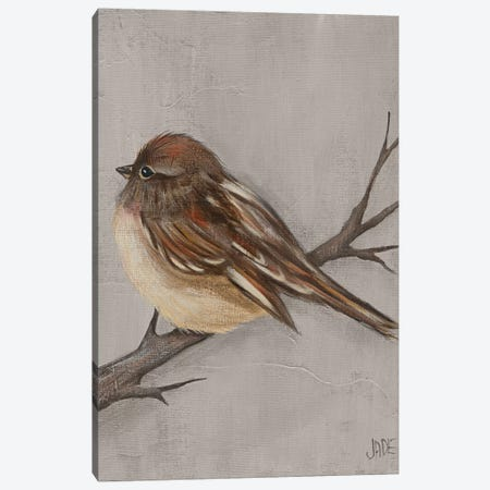 Winter Bird III Canvas Print #JAD83} by Jade Reynolds Art Print