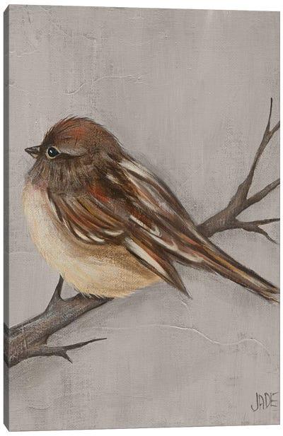 Winter Bird III Canvas Art Print