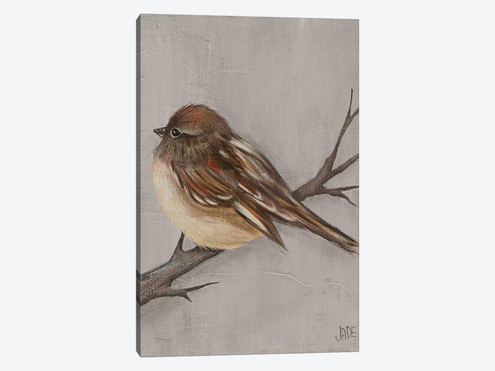 Winter Bird III by Jade Reynolds 1-piece Canvas Art Print