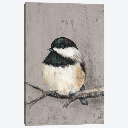 Winter Bird IV Canvas Print #JAD84} by Jade Reynolds Canvas Art