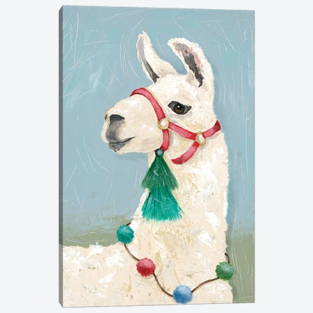 Painted Llama I Canvas Print #JAD98} by Jade Reynolds Canvas Wall Art