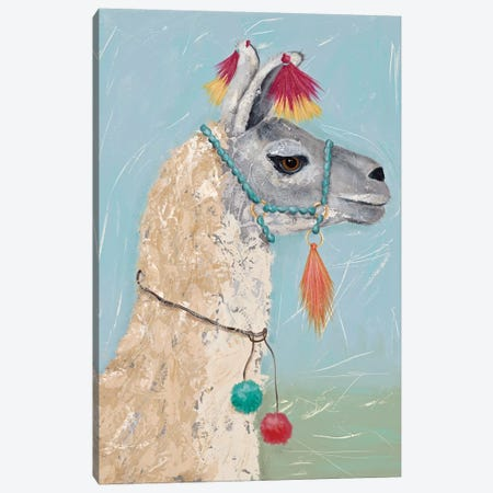 Painted Llama II Canvas Print #JAD99} by Jade Reynolds Canvas Art