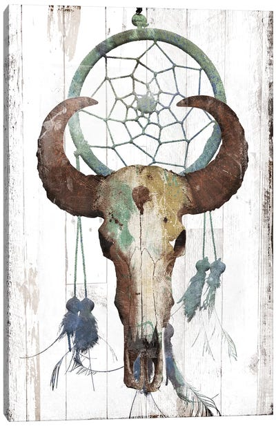 Bull With Dreamcatcher Canvas Art Print