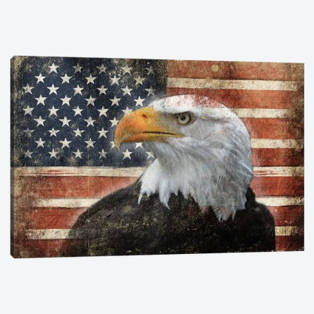 Eagle And Flag Canvas Print #JAG3} by Jace Grey Art Print