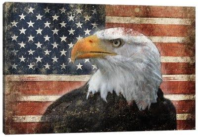 Eagle And Flag Canvas Art Print