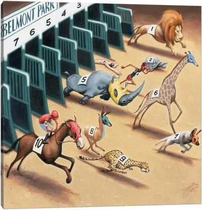 Animal Race Canvas Print #JAM1