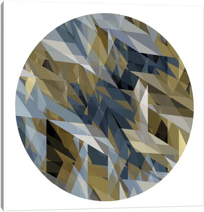 Facets In The Round II Canvas Art Print