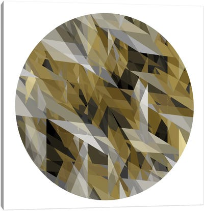 Facets In The Round III Canvas Art Print