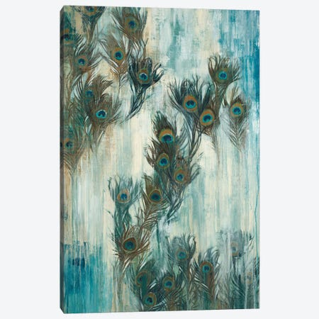 Proud As A Peacock Canvas Print #JAR100} by Liz Jardine Canvas Art