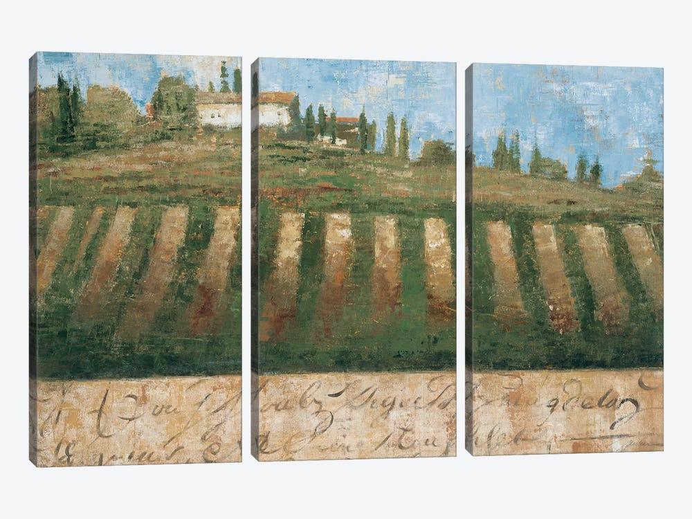 Rustic Tuscany by Liz Jardine 3-piece Canvas Print