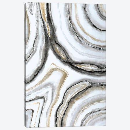 Shades Of Gray II Canvas Print #JAR107} by Liz Jardine Canvas Art Print