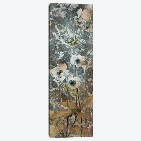 Slender Blossoms II Canvas Print #JAR114} by Liz Jardine Canvas Wall Art