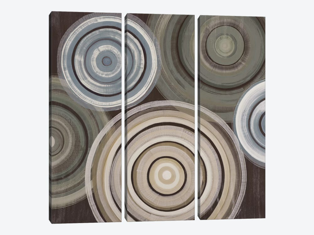 Spin Cycle by Liz Jardine 3-piece Canvas Wall Art