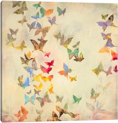 All Aflutter Canvas Art Print