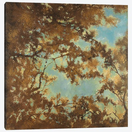 Tree Canopy Canvas Print #JAR124} by Liz Jardine Canvas Art Print