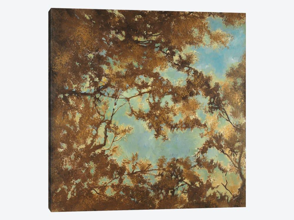 Tree Canopy by Liz Jardine 1-piece Canvas Art Print