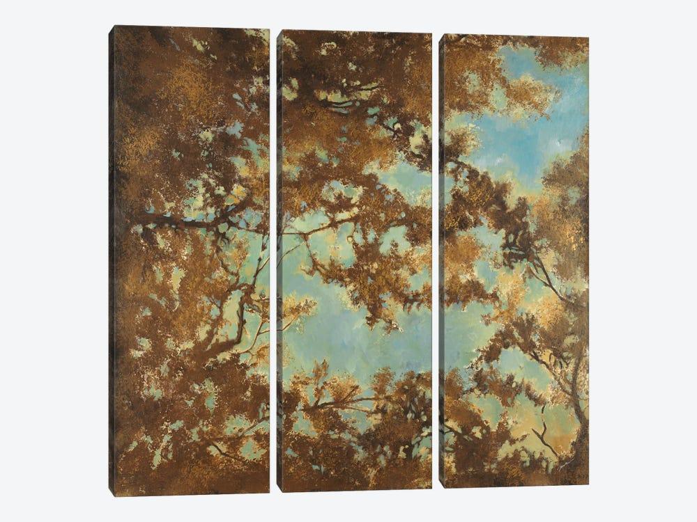 Tree Canopy by Liz Jardine 3-piece Canvas Art Print