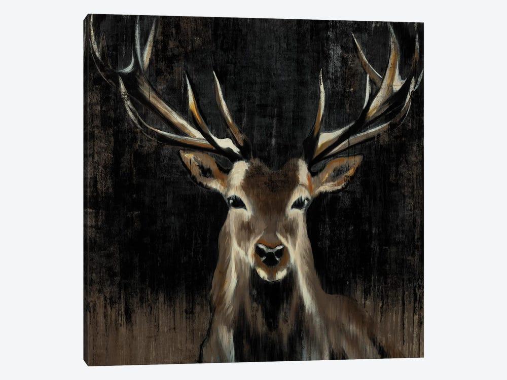 Young Buck by Liz Jardine 1-piece Art Print