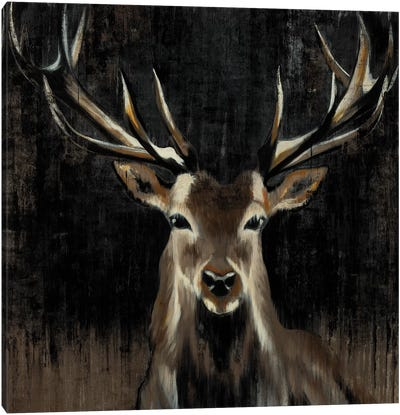 Young Buck Canvas Art Print