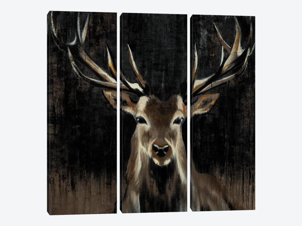 Young Buck by Liz Jardine 3-piece Art Print