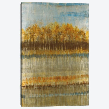 Beach Trees Canvas Print #JAR13} by Liz Jardine Canvas Art