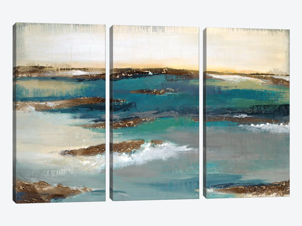Coastal Bluff by Liz Jardine 3-piece Canvas Art