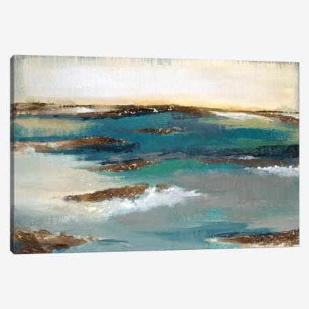 Coastal Bluff Canvas Print #JAR141} by Liz Jardine Canvas Art