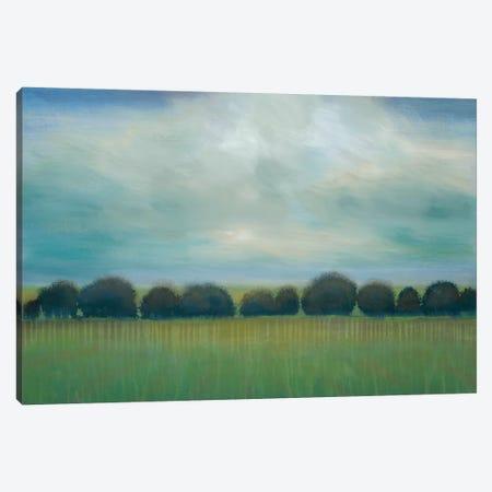 Greener Pastures Canvas Print #JAR143} by Liz Jardine Canvas Art