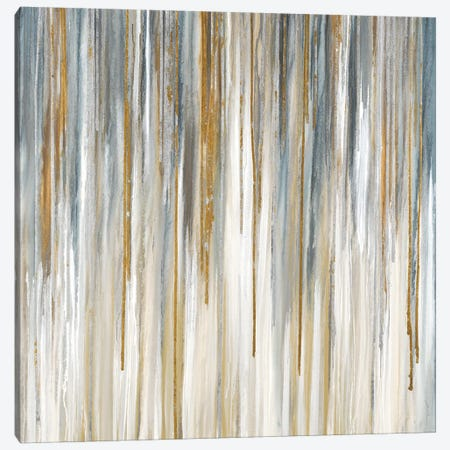 Quicksilver Canvas Print #JAR171} by Liz Jardine Canvas Art Print