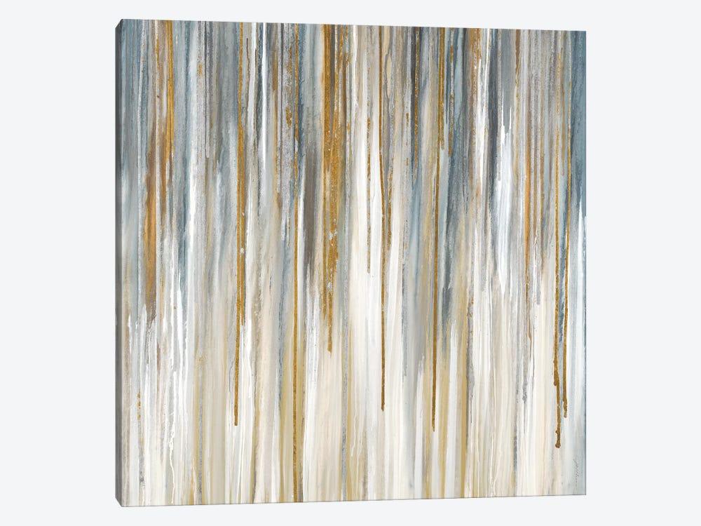 Quicksilver by Liz Jardine 1-piece Canvas Art Print