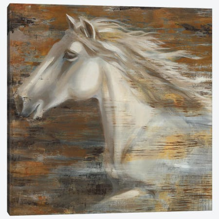 Running Wild Canvas Print #JAR174} by Liz Jardine Canvas Artwork
