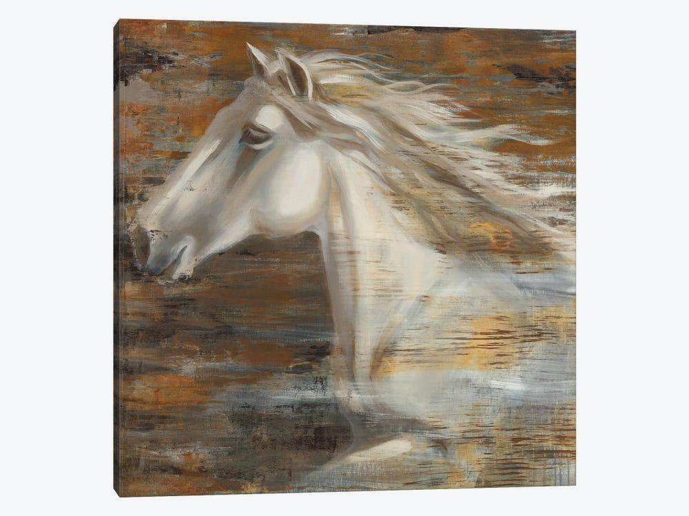 Running Wild by Liz Jardine 1-piece Canvas Wall Art