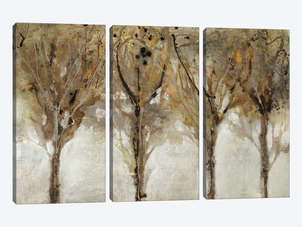 Seeing The Light by Liz Jardine 3-piece Canvas Wall Art