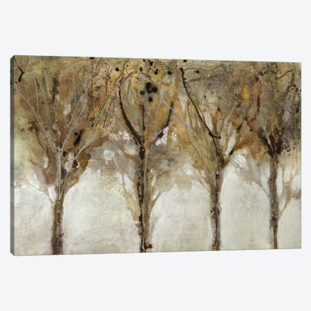 Seeing The Light 3-Piece Canvas #JAR176} by Liz Jardine Canvas Wall Art